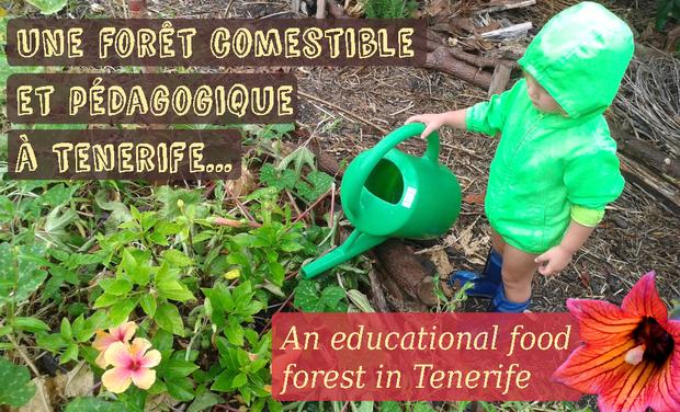 Visueel van project Une forêt comestible et pédagogique à Tenerife