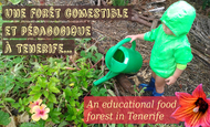 Widget_forestcomestiblefoodforest2_copy-1489571893-1489571908
