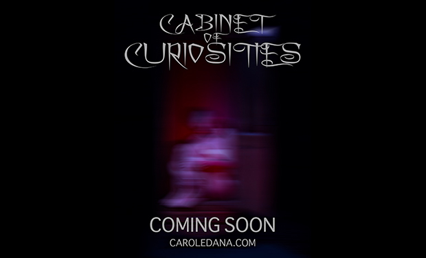 "Visuel du projet ""Cabinet of Curiosities"" Photography Exhibition"