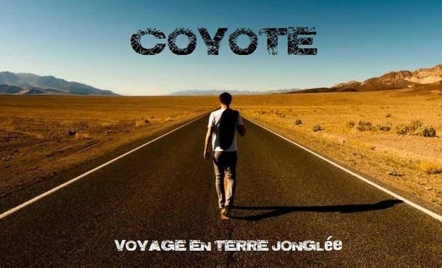 Large_coyote_vetj-1490693140-1490693153