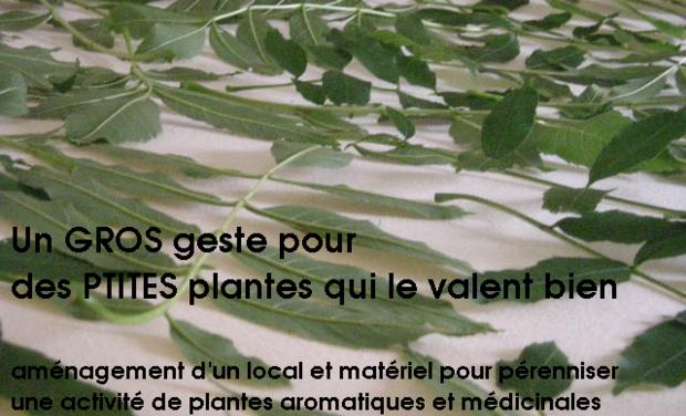 Visuel du projet Un GROS geste pour ces PTITES plantes qui le valent bien!