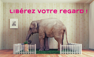 Widget_cilelephantkkbb-1488804971-1488805012