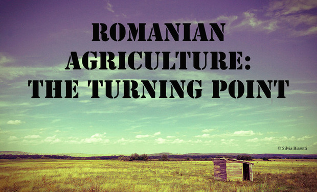 Visueel van project Romanian agriculture: the turning point