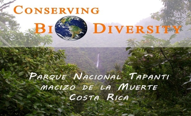 Visuel du projet Conserving Rainforest - Costa Rica
