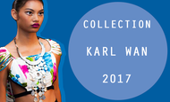 Widget_kkbb-header-karl-wan-2017-1489766492-1489766499