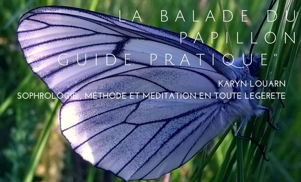 """Visuel du projet """"La balade du Papillon"""" Aidez-le à s'envoler !"""