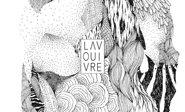 Visueel van project 10 ans La Vouivre