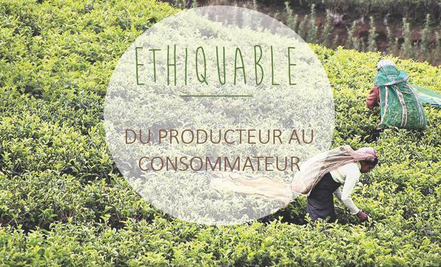 Visuel du projet A la rencontre des producteurs malgaches pour la coopérative Ethiquable