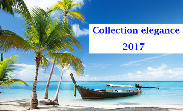 Visueel van project Le sapelogue Collection 2017