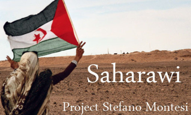 Large_512_saharawi2010_27ft15_2