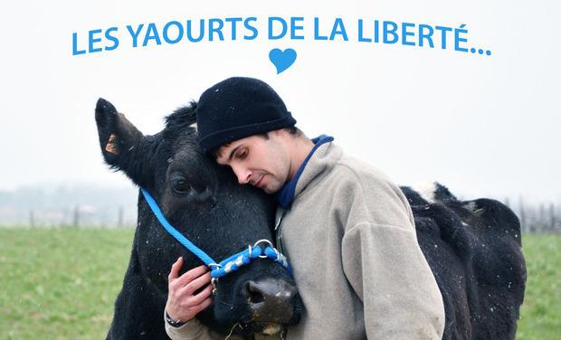 Visuel du projet Les yaourts de la liberté