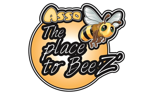 Project visual The Bee'Z' Festival 2017