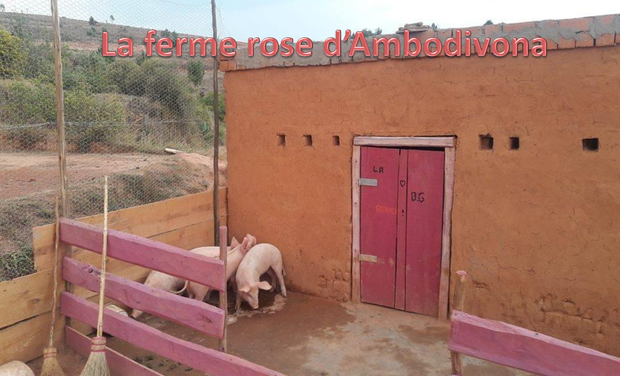 Project visual La ferme rose d'Ambodivona