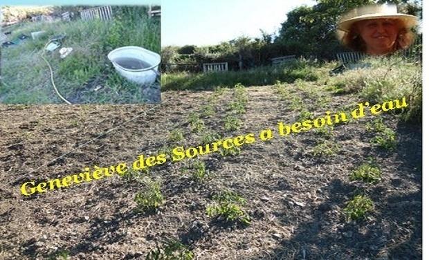 Visueel van project Geneviève des sources a besoin d'eau