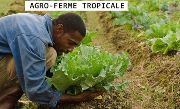 Visuel du projet Agro-Ferme Tropicale