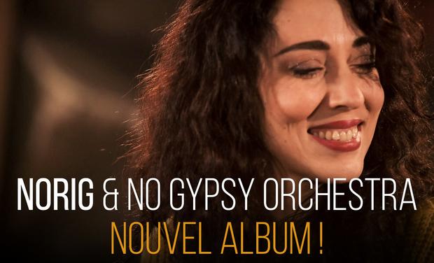 Visuel du projet Norig Nouvel Album