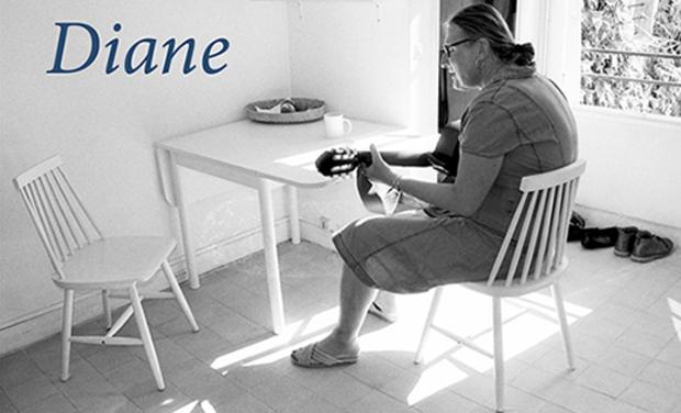 Visuel du projet Diane