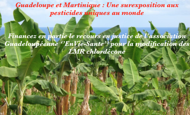 Project visual Guadeloupe et Martinique : une surexposition aux pesticides unique au monde.