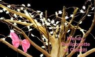 Widget_arbre_texte-1495545455-1495545464