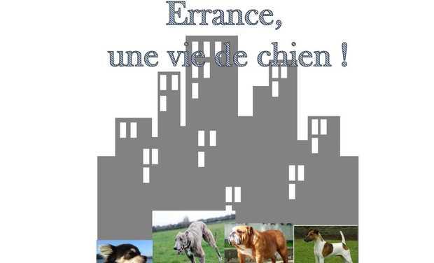 Visuel du projet Premier roman d'une jeune fille Dijonnaise de 14 ans