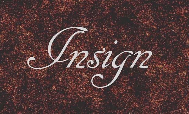 Project visual Aidez nous à réaliser l'EP d'Insign !