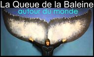 Widget_lqb_autour_du_monde-_kkbb-1497192469-1497192482