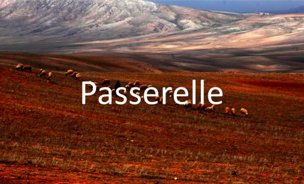 Large_img-passerelle-1496774695-1496774723-1496774727-1496774768