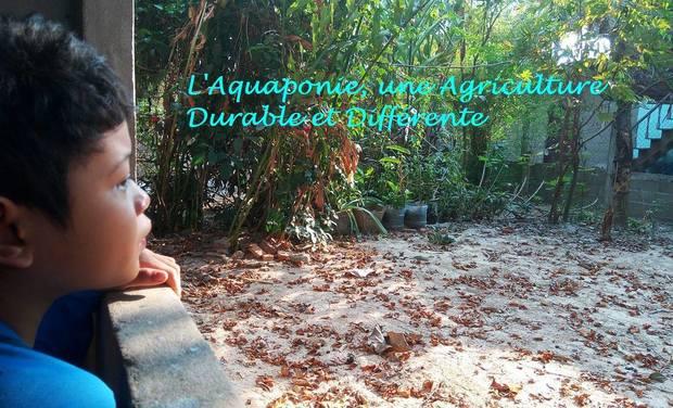 Visuel du projet Culture autonome d'aquaponie au Laos