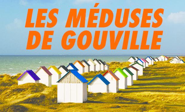 Visuel du projet Les Méduses de Gouville