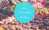 Widget_aux_merveilles_d_alice__2_-1499603653-1499603665
