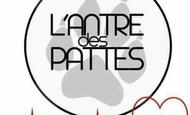 Widget_l_antre_deux_pattes-1500940740-1500940762