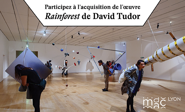 Visuel du projet Acquisition de Rainforest de David Tudor