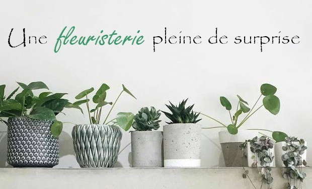 Project visual Une fleuristerie pleine de surprise...