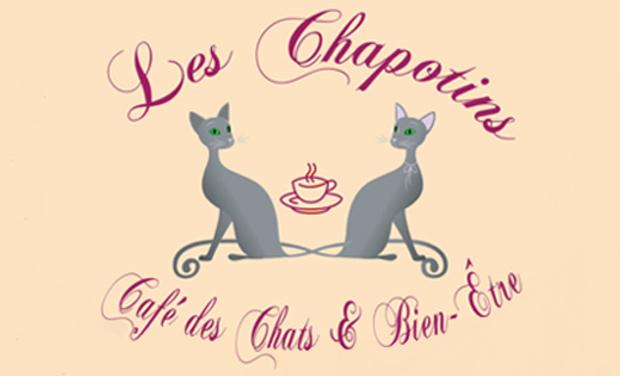 Visueel van project Les chapotins