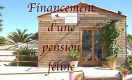 Widget_pension_les_chats_en_vacances-1502301189-1502301213