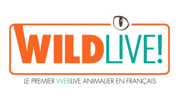 Large_logo_wildlive_avec_baseline-1502970835-1502970853
