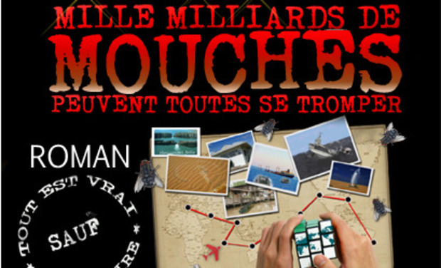 Project visual Mille millards de Mouches