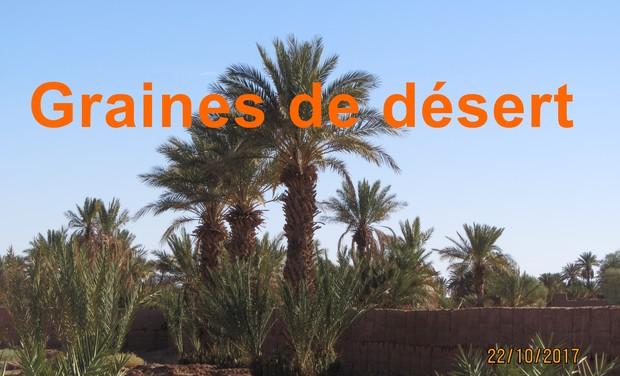 Visuel du projet Graines de désert