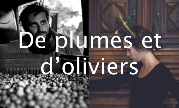 Visueel van project De plumes et d'olivers