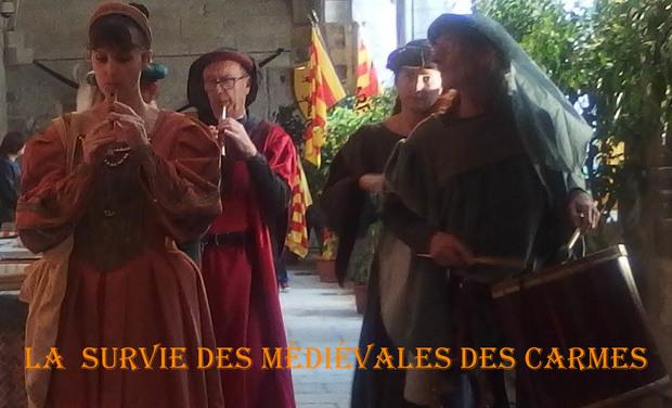 Visuel du projet la survie des Médiévales des Carmes