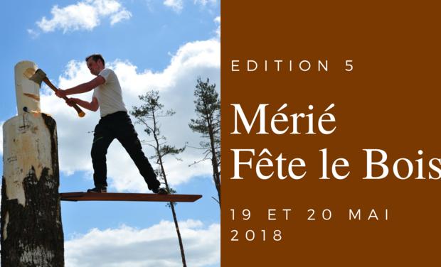 Project visual Mérié fête le bois, 5ème édition