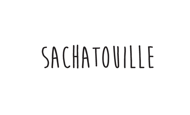 Visueel van project SACHATOUILLE