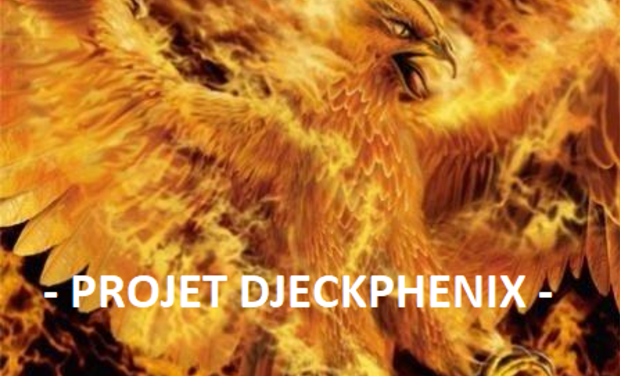 Project visual Projet Djeckphenix