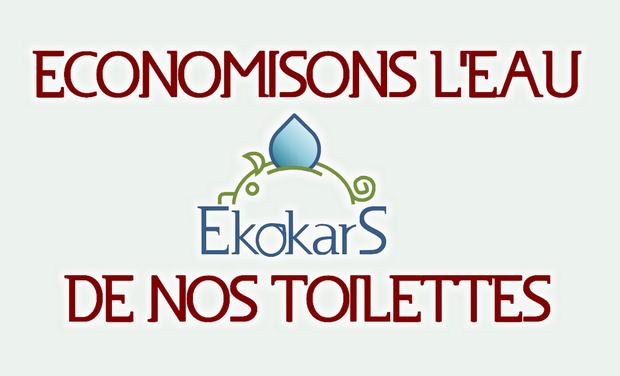 Visuel du projet Ekokars