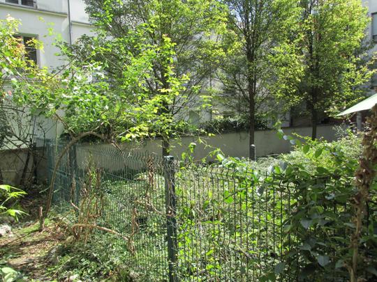 Jardin_sud_02-1408560776