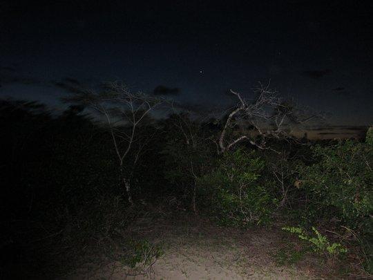 Br_nuit_claire-1408913997