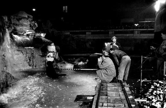 Douceur-de-vivre-1960-tou-01-g-1409000765