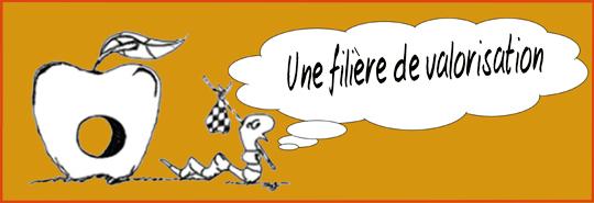 Vers_avec_bulle_fili_re_-_copie-1409462789