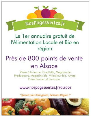 Flyer_alsace-1411029488