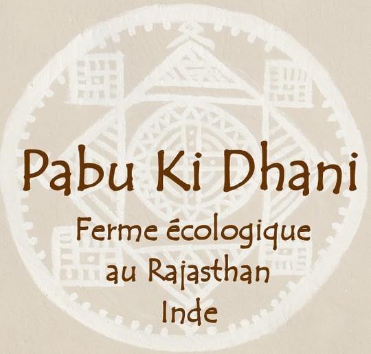 Pabu_ki_dhani-1411131573